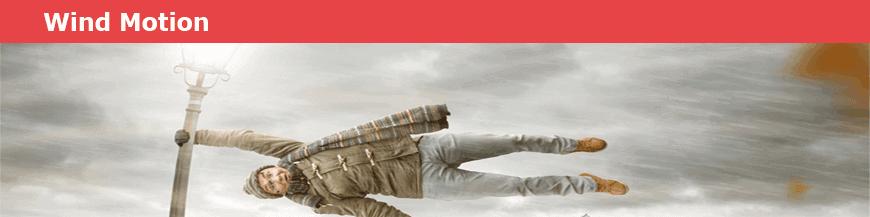 3d Windspiele und 3d Windräder aus Edelstahl von Wind-Motion